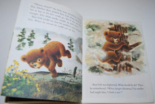Smokey the bear little golden book 5