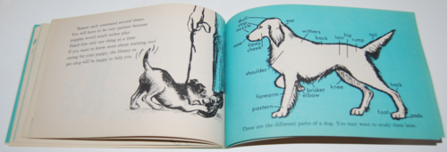 I can read about dogs & puppies 8
