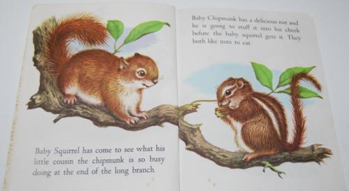Baby animals lgb 3