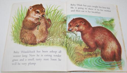 Baby animals lgb 6