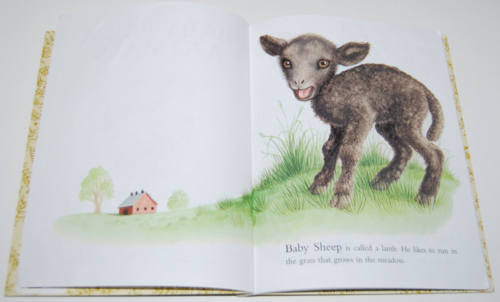 Baby farm animals lgb 2