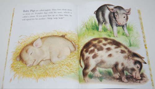 Baby farm animals lgb 6