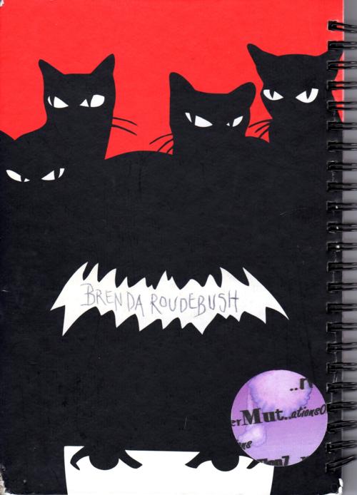 Emily strange journals 4x