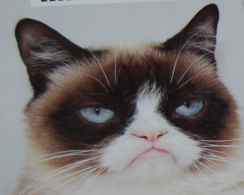 Grumpy cat valentines 2