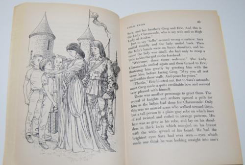 Gray magic scholastic book 5