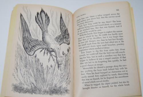 Gray magic scholastic book 9