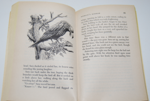 Gray magic scholastic book 6