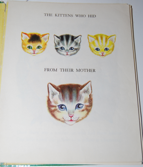 The kittens who hid from their mother 2