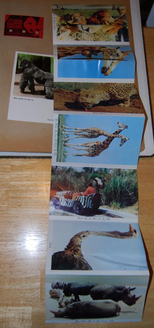 Vintage lion country safari ephemera