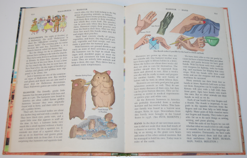 The golden book picture encyclopedia set 4