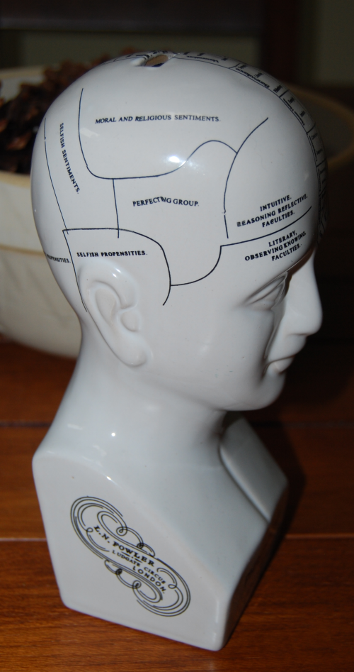 Phrenology bank 3
