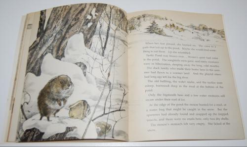 Scholastic book bear mouse 5