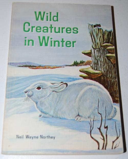 Wild creatures in winter