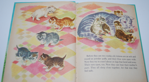 The wonder book of kittens 3