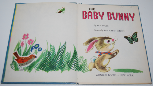 The baby bunny 2