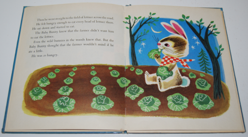 The baby bunny 7