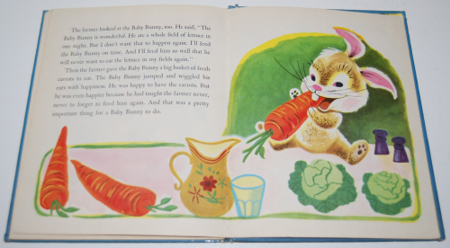 The baby bunny 10