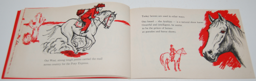 I can read about horses 6