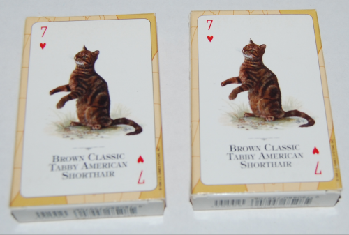 Cats of the world playing cards x