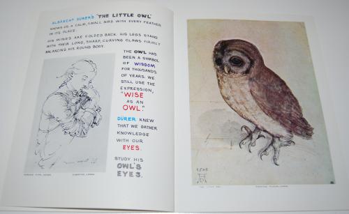 Art for children book series 19