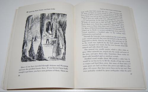 The adventure book of rocks 5