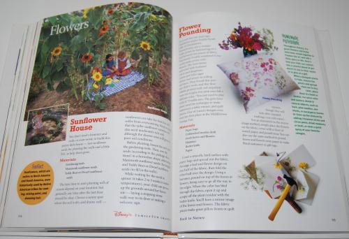 Disney's family fun crafts book 8