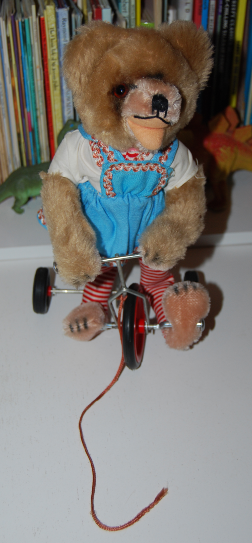 Tricycle bear