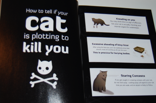 How to tell if your cat is plotting to kill you 6