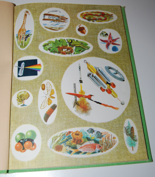 Golden picture book of birds 1