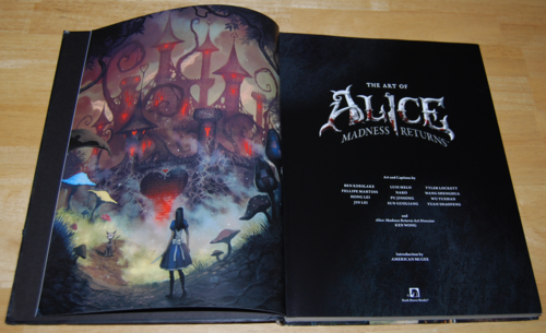 The art of alice madness returns book 1