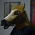 mr horse