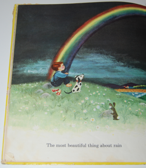 Rain book by virginia parsons 7