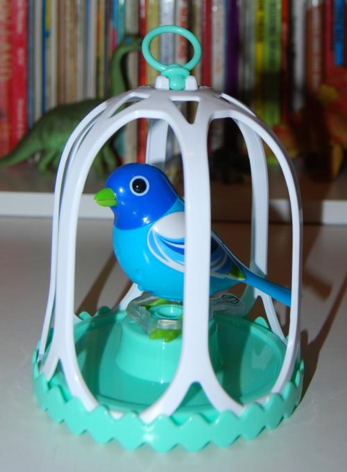 Digibirds 3