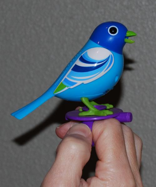 Digibird 6
