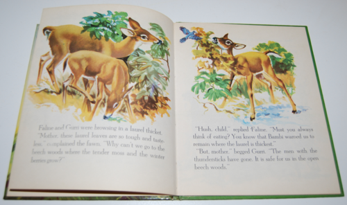 Bambi's children wonder book 5
