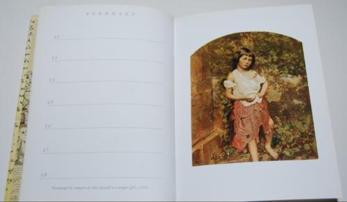 Alice's adventures underground book of days 6