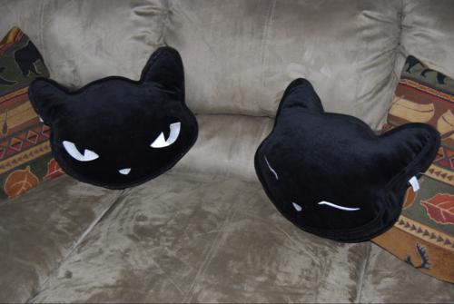 Strange kitty pillows