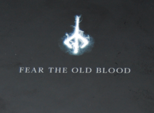 Bloodborne guide x