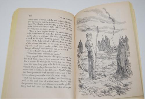 Gray magic scholastic book 8