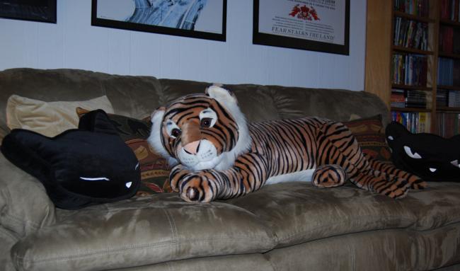 big cats ~ tigers, lynx & leopards