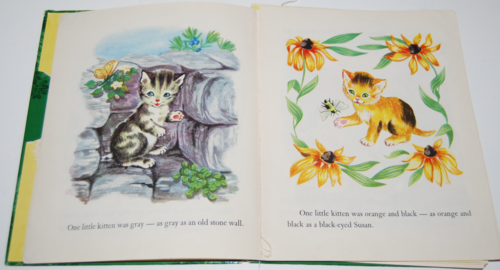 The kittens who hid from their mother 4