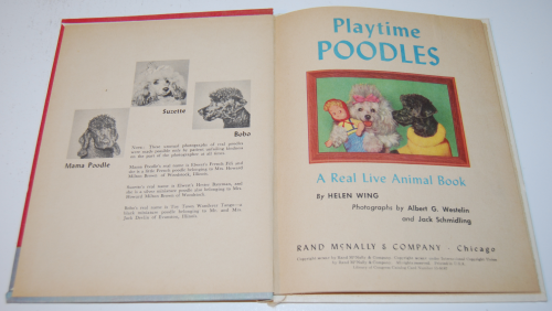 Playtime poodles 1