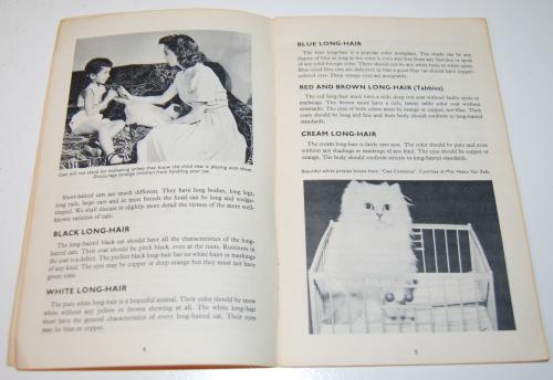 Kittens vintage guide 3
