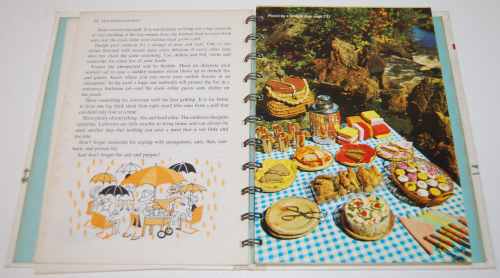 Betty crocker outdoor cookbook 3