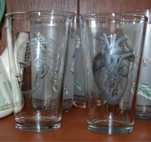 Anatomy pint glasses x