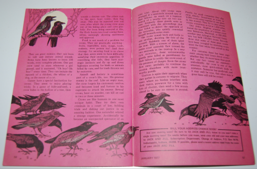 Jack & jill magazine january 1977 13