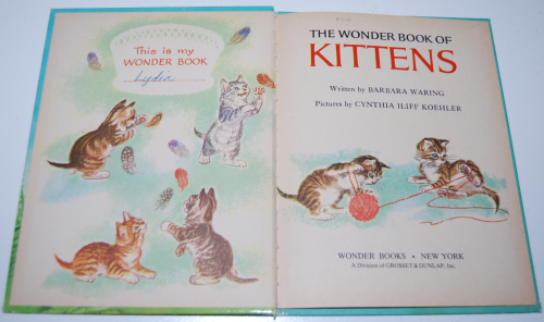 The wonder book of kittens 1