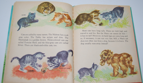 The wonder book of kittens 7