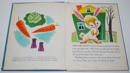 The baby bunny 3
