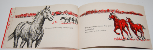 I can read about horses 8
